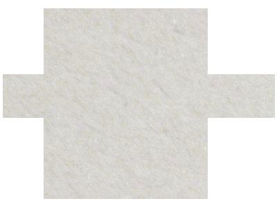 Javier Chavanel